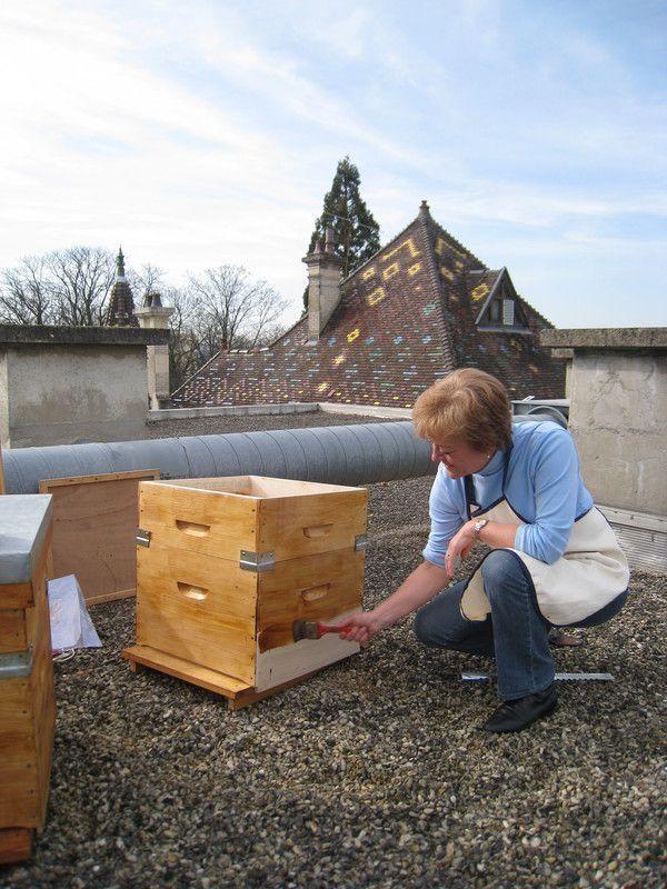 pr paration de ruche sur un toit des abeilles en ville. Black Bedroom Furniture Sets. Home Design Ideas